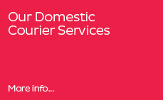 Our Domestic Services